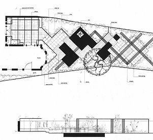 Garden design plan, drawing, section and sketch