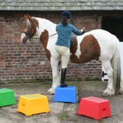 Classic Show Jumps Mounting Block