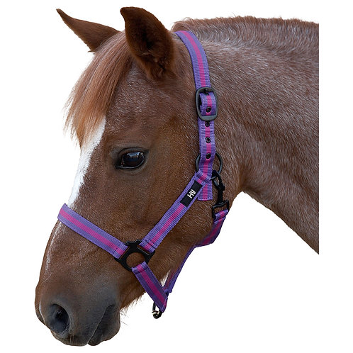 Hy Duo Head Collar