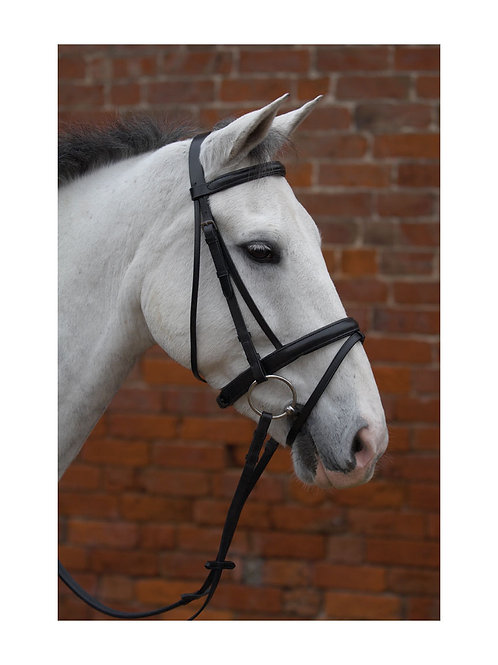 Hy Padded Flash Bridle with Reins Black