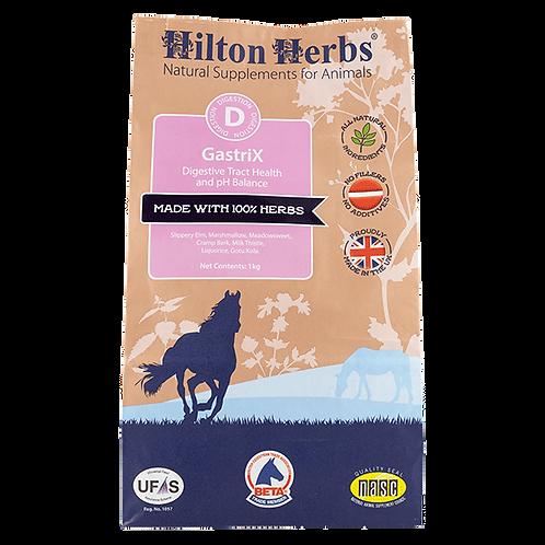 Hilton Herbs Gastrix