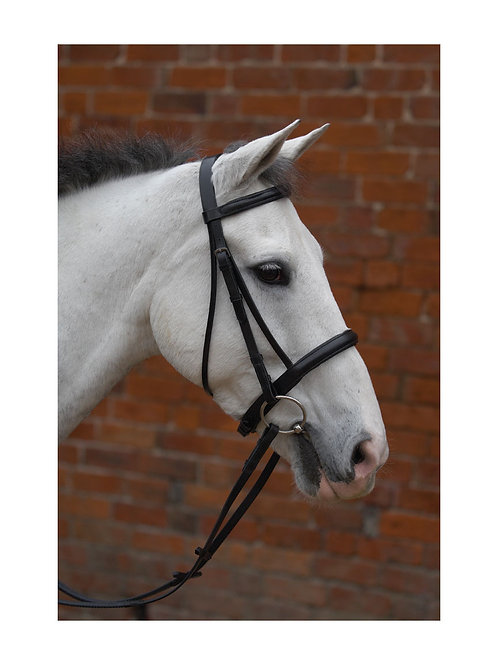 Hy Padded Cavesson Bridle with Reins Black