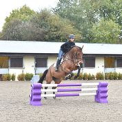 Classic Show Jumps Sloping Block Jump