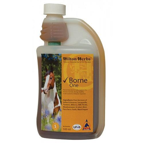 Hilton Herbs Borne One