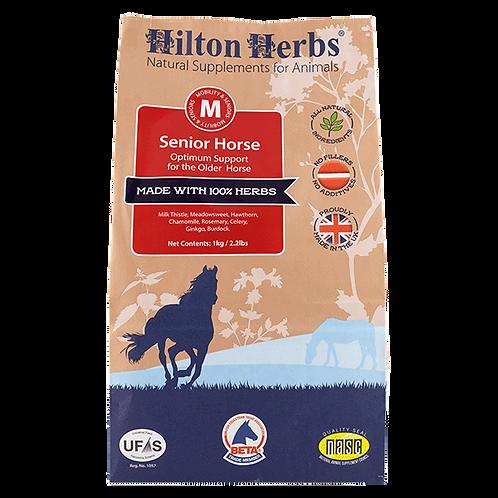 Hilton Herbs Senior Horse