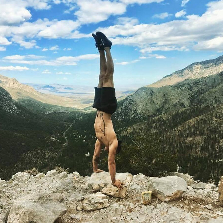 Journey to a Handstand