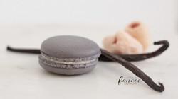 Lychee and French vanilla macarons
