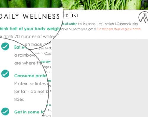 Daily Wellness Checklist