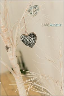 Bobbi Carpino Photography