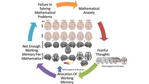 New Article about the impact of math anxiety on working memory by EEG activity and connectivity.