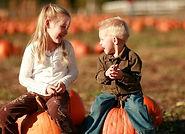 pumpkin2_edited_edited.jpg