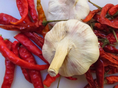Chilli and Garlic Spray for Garden Pests