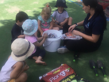 Making a Worm Farm