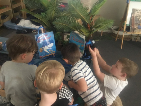 Cultivating an Interest in Ocean Life.