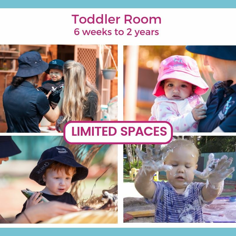 Toddler Room - Dragonfly's Early Learning