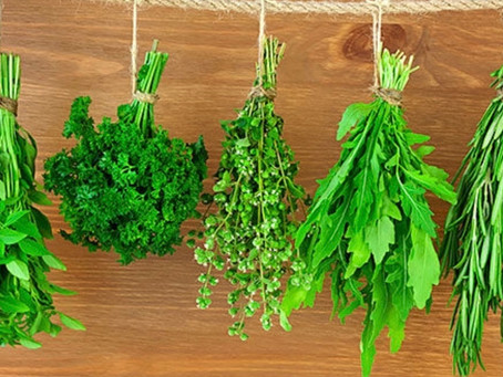 Tips for Storing Herbs