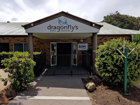 Dragonfly's News: Coming Soon...
