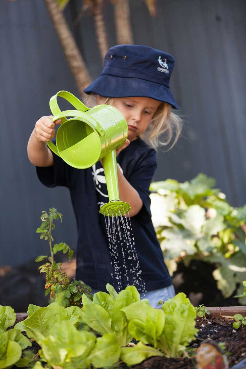 Kid Watering a Plant - Dragonfly's Programs