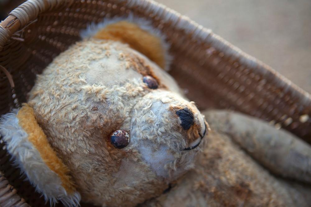 A preloved teddy bear