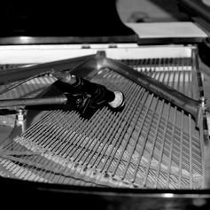Inside piano.jpg
