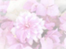 IMG_0884_edited_edited.jpg