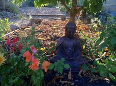 Buddha IONS.JPG