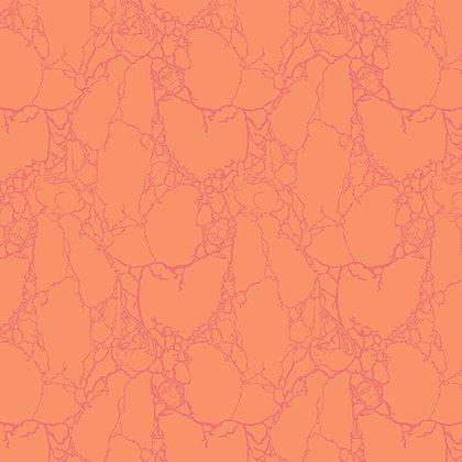 Spirit Animal - Stonecold Critters - Sunkiss