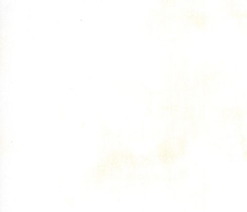 Grunge Basics White 356