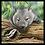 Thumbnail: Wildlife Art  DV3177 (panel)