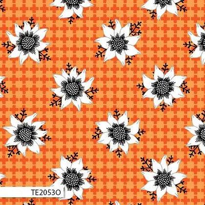 Matilda - Orange Flannel Flower TE2053O