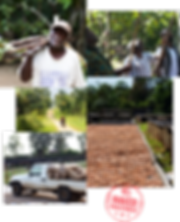 Uganda_Imagery.png