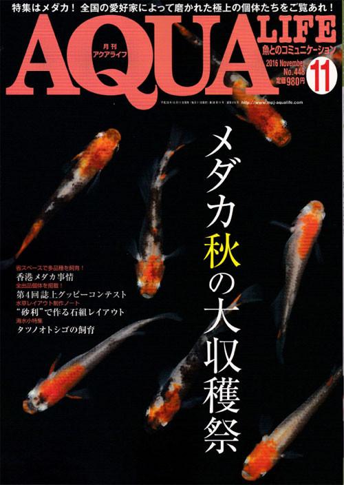 AQUA LIFE 11月号入荷!