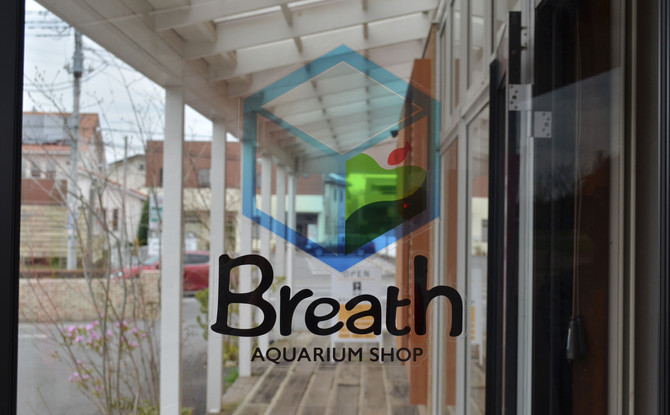 AQUARIUM SHOP 【Breath】