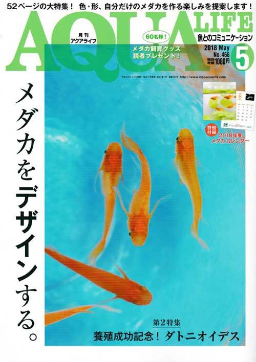 月刊誌5月号入荷!