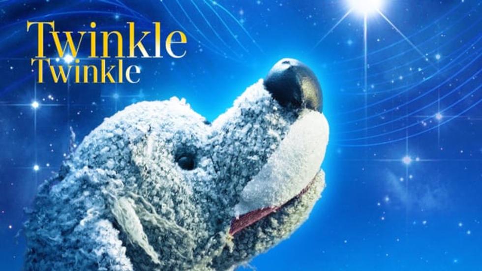 Trailer for Twinkle, Twinkle