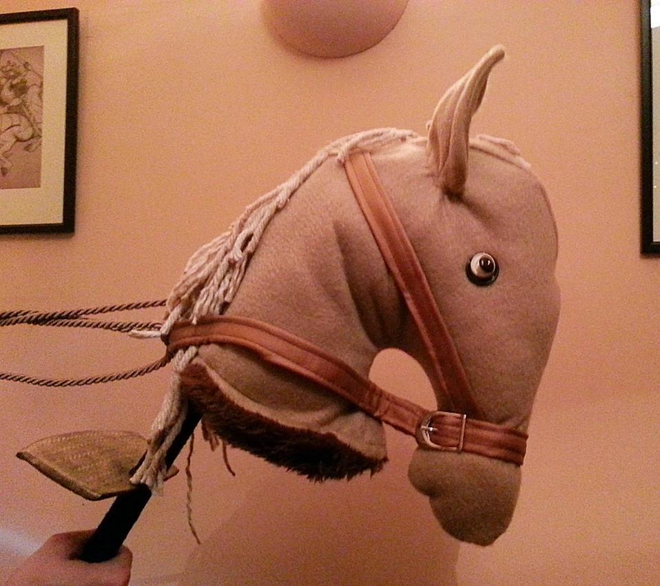 Aardvark The Horse