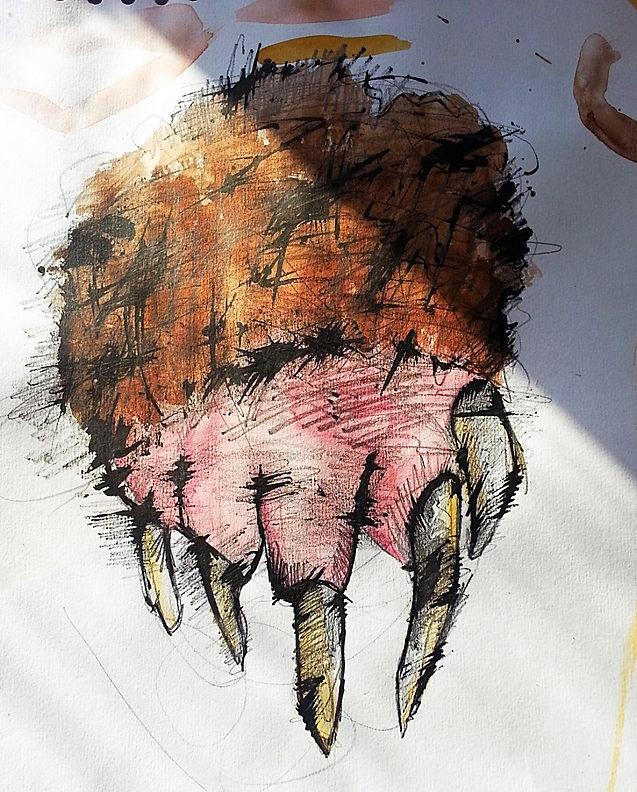 Claw sketch