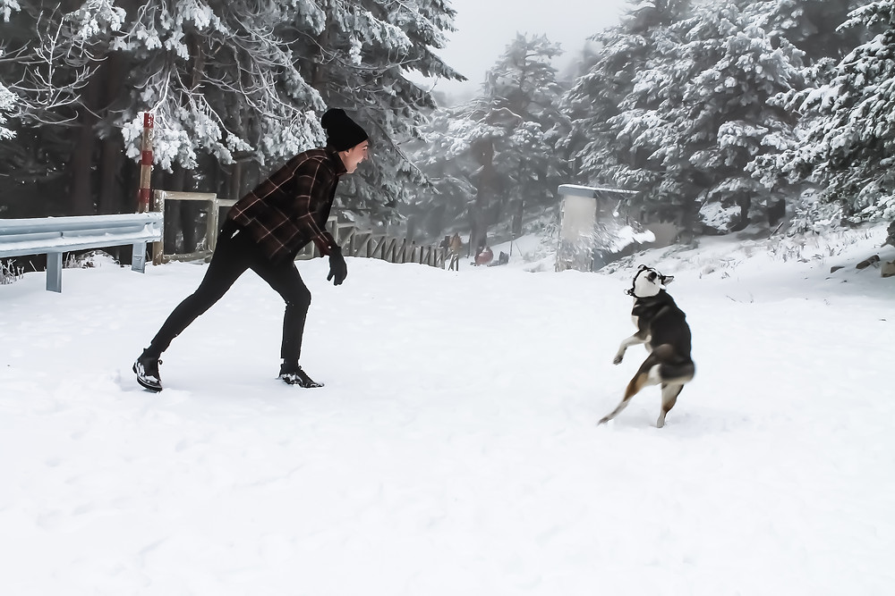 Miguel Biedma jugando con su perrita Sara
