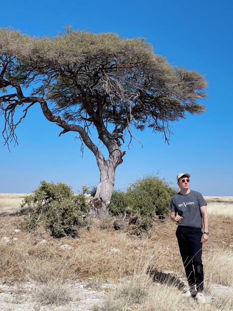 ETOSHA, LA JOYA DE NAMIBIA