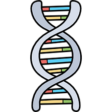 003-dna.png