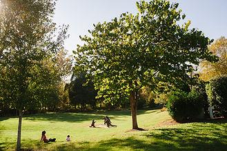 Founders Park.jpg