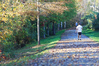 Parkside greenway.jpg