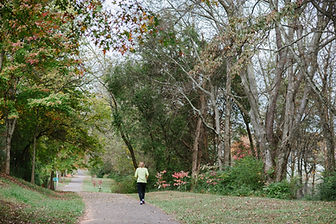 Turkey Crk greenway.jpg