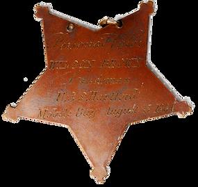 medal of honor back wilson brown.png