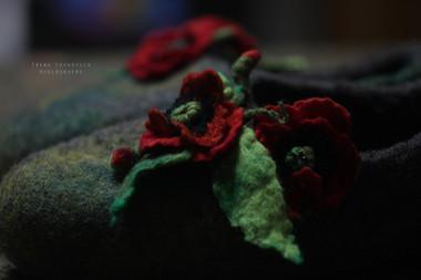 Poppy fl04res.jpg