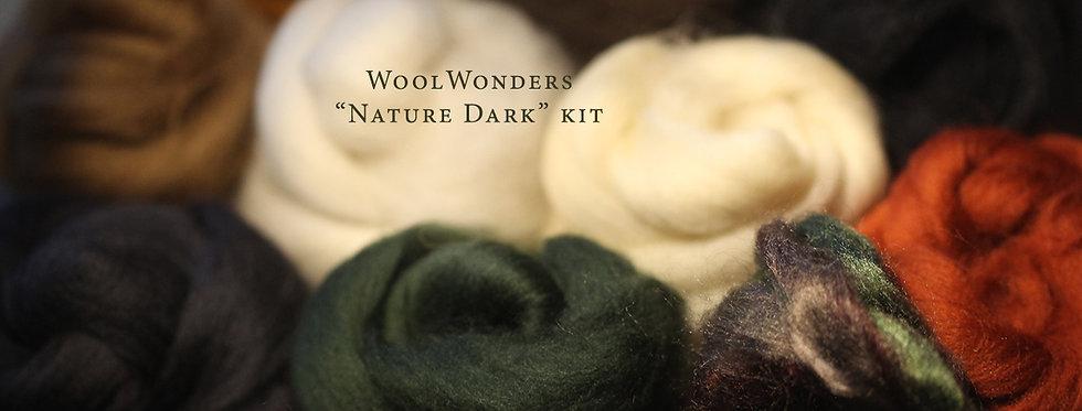 """NATURE DARK"" KIT. Felting Wool Merino Fiber+3 Shades SilkyFibers"
