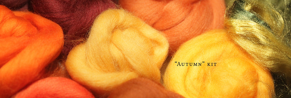 """AUTUMN"" KIT. Felting Wool Merino Fiber+3 Shades SilkyFibers"