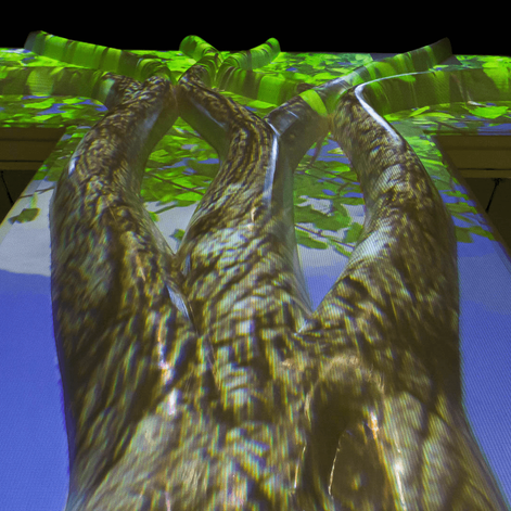 TREE_GALLERY-8.png