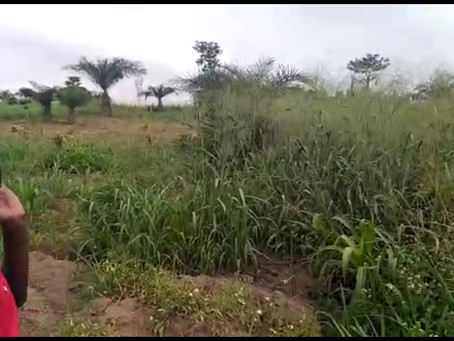 Salih Self Development Center Has Found 2 Acres of Land in Aboso Kumasi Ghana.
