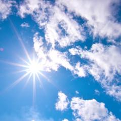パクチーオイルの紫外線誘発日焼け炎症に対する軽減効果